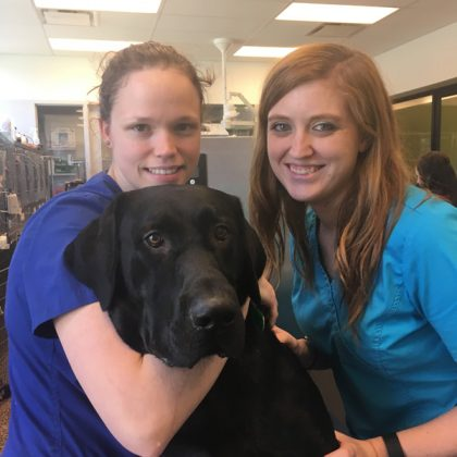 Two team members named Mallory and Minnie with a very large black dog